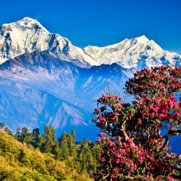 5 best tourist attractions in Nepal