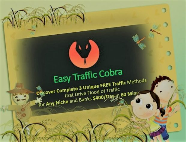 Download Easy Traffic Cobra. Get Instant Traffic On Any Niche