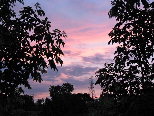 Sunset - from the rear of 16 Washington Ave. - 07Jun09b