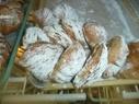Serpe's Bakery, image of sfogliatelle