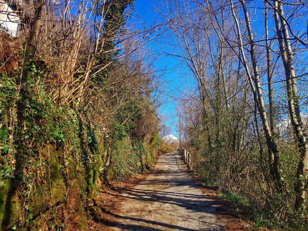 Strada asfaltata da Baiedo al Rifugio Riva