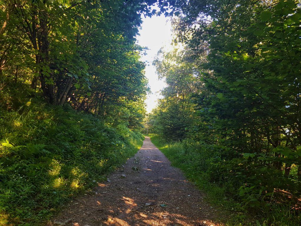 Sentiero dalla Colma di Sormano al Monte Palanzone