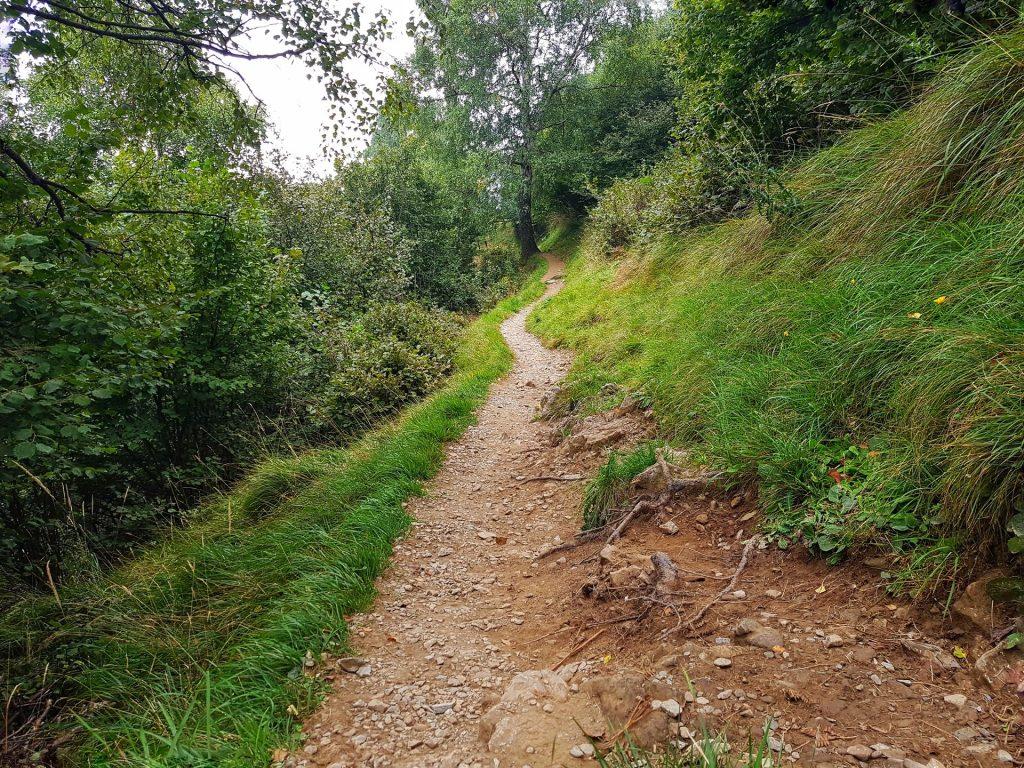 sentiero alto pianeggiante maneggio