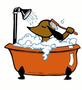 cucciolo nella vasca