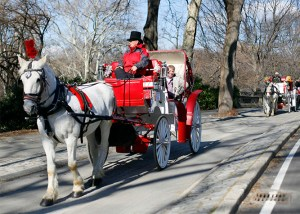 carrozza a manhattan