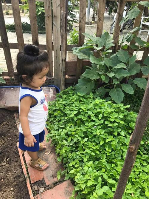 Châu cho hay, vườn rau cô trồng ké dưới sân chung cư nằm sát bờ sông. Cô tận dụng thùng xốp và khoảng đất nhỏ để trồng rau lang, rau muống, cải bẹ xanh, rau dền Nhật, rau ngót Nhật, mướp, bầu, bí...