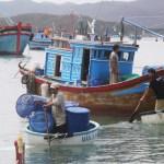 Những ngày qua, người dân ở huyện Vạn Ninh (Khánh Hòa) tiếp tục đổ ra biển để tìm kiếm lồng bè nuôi tôm hùm bị cuốn trôi do bão số 12