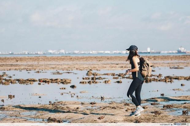 Không thể tin nổi: Bãi rác trị giá 360 triệu USD trở thành… địa điểm du lịch hút khách ở Singapore, phải đặt trước 4 tháng mới đến lượt
