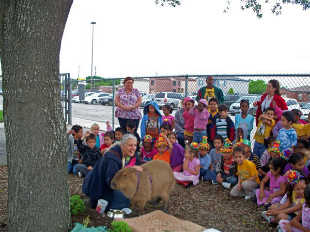 Me, my owner and some of the kids