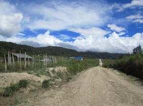 The road to Onago, My Village
