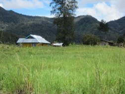 This empty field was once a house of a mission worker, who was killed and his house burned during the 1956 Obano War