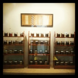 Herbs samples in the zoo museum