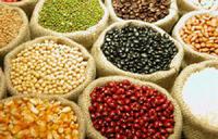 Alimentando Além de Sete Bilhões