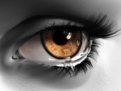 Mulheres: Fragilidades Expostas 12