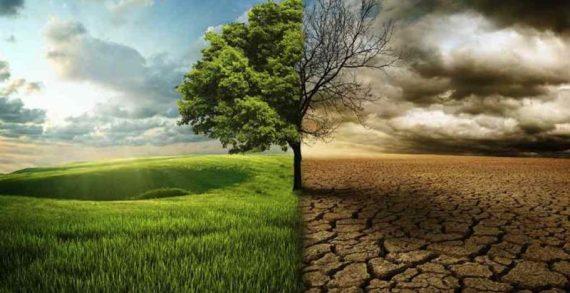 Mudanças climáticas: nossos esforços são suficientes?