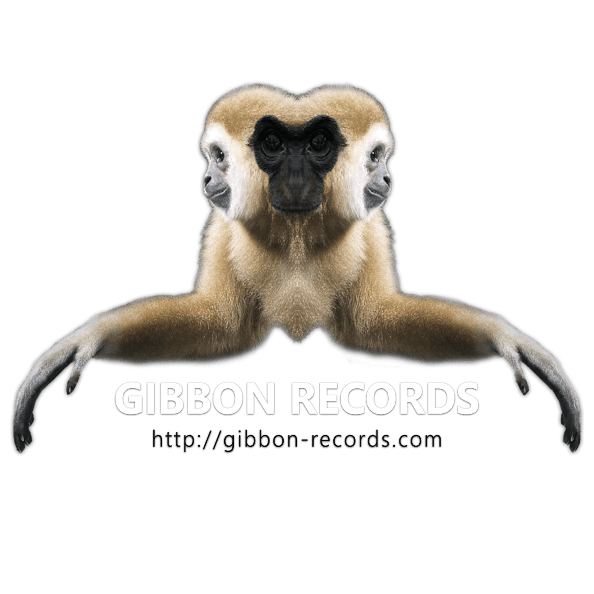 Gibbon_logo_Main_Dark_transBG