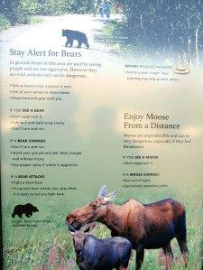 Stay alert for bears poster
