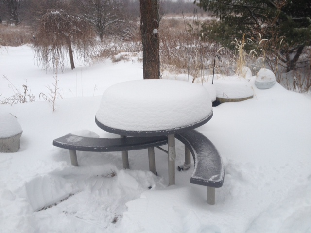 """10"""" of snow in Franklin NY on December 15, 2013"""