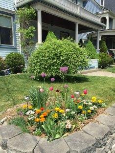 IMG_5078-bgm-corner-garden