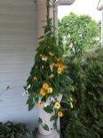 IMG_5083-bgm-porch