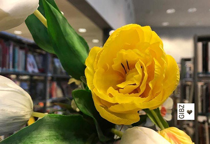 Frühlingsgefühle in der Mediathek…