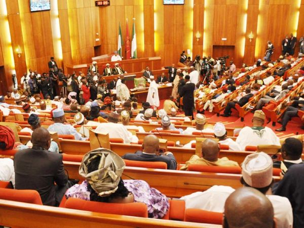Senate To Stop JAMB From Admitting Candidates Below 18 Years