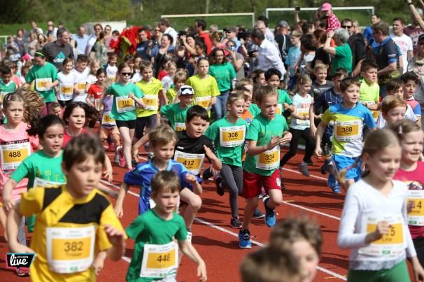 Gifhorner Lauftag Flutmulde, Foto: Cagla Canidar