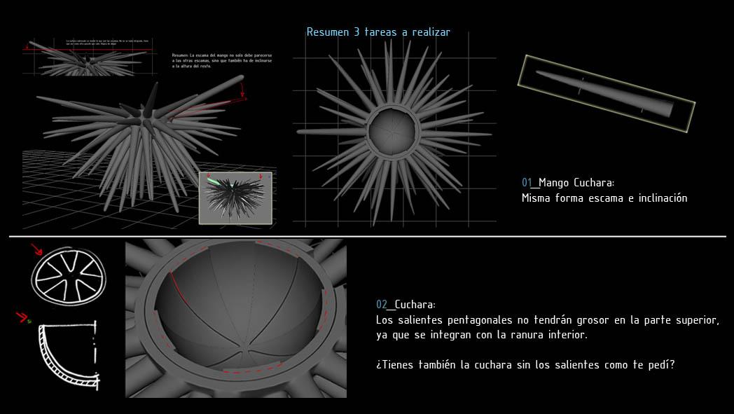 Sea Urchin (16)