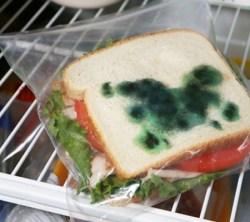 Moldy Sandwich Bag