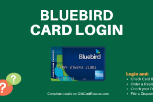 """How to Login to Bluebird Account"""
