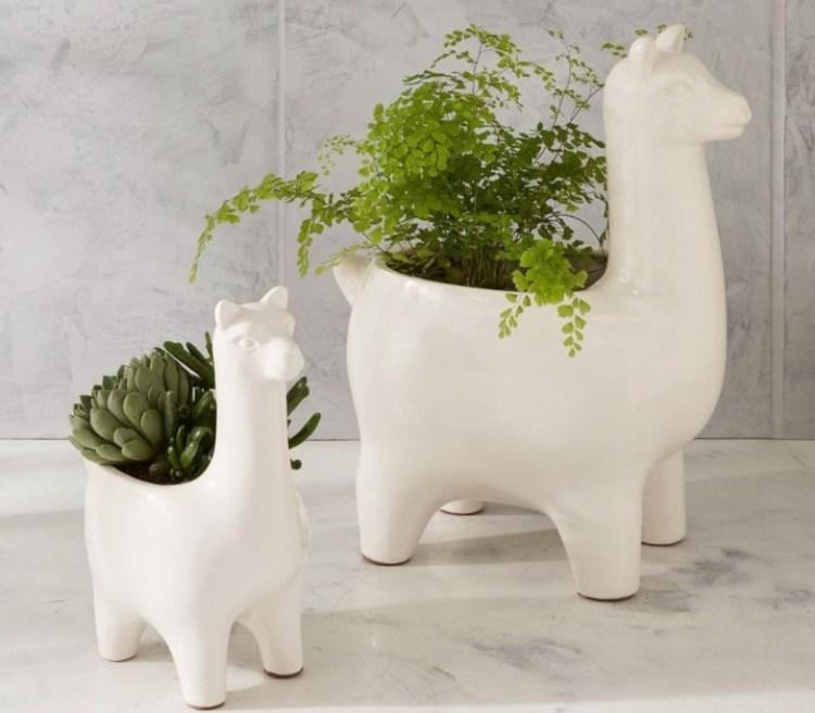 ceramic plants