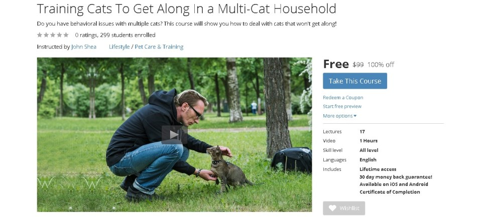 FREE Udemy Course on Training Cats To Get Along In a Multi-Cat Household