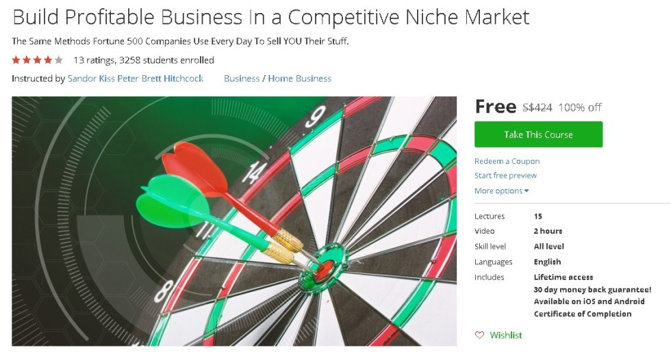 FREE Udemy Course on Build Profitable Business In a Competitive Niche Market