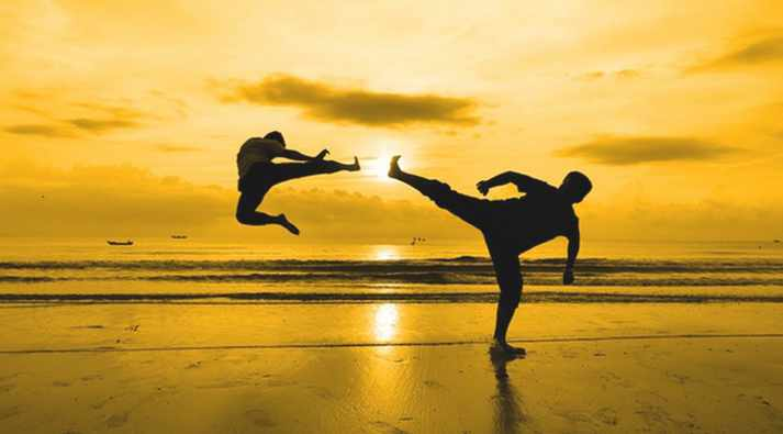 Free Udemy Course on 10 Minute Daily Martial Arts Workout Mini-Challenge