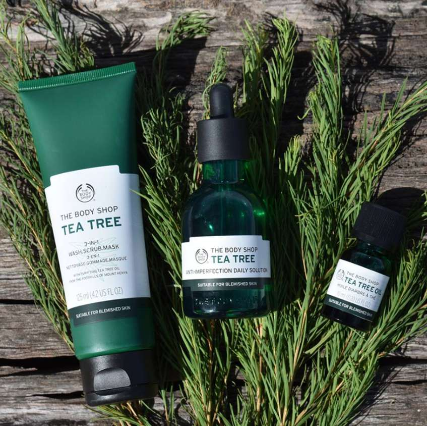 #WIN Tea Tree Range from The Body Shop