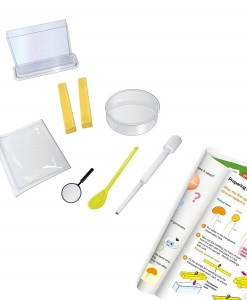 Magnoidz Roots and Shoots Science Kit sold by Gifts for Little Hands