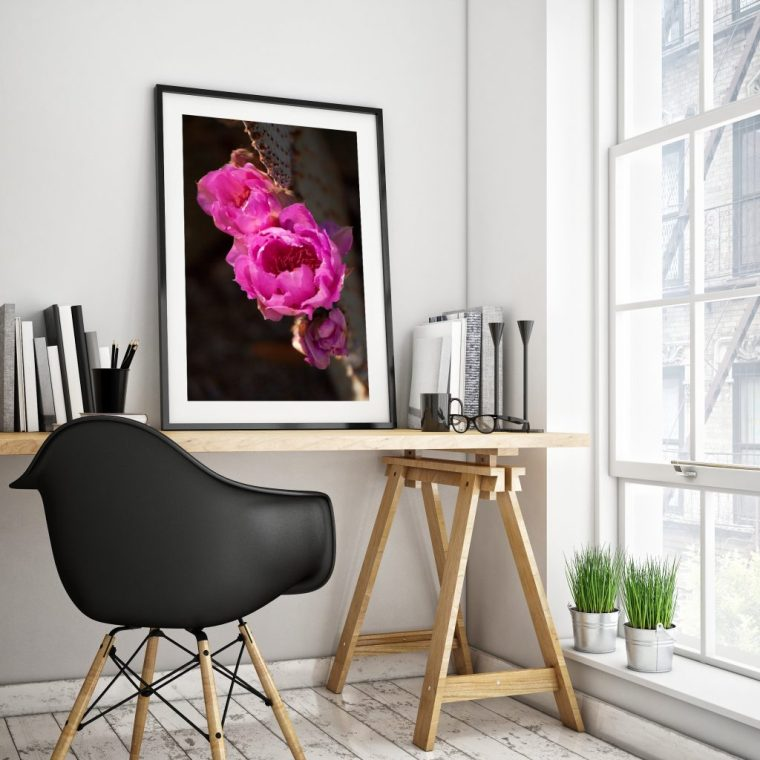 Pink Beaver Tale cactus flowers framed art print for home decor By Tatiana