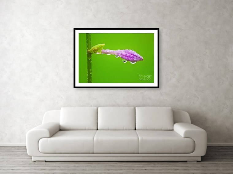 Water blessing frame art