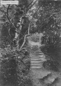 The Landslip, c.1900