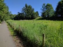 The Newport-Sandown cycletrack at Shide