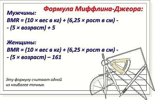 Рассчитать базовый обмен веществ калькулятор. Базовый (основной) обмен веществ