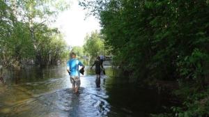 Etwas Hochwasser... gut um ein Kneippbad zu nehmen...