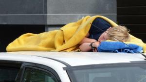Ein Nickerchen auf dem Autodach...