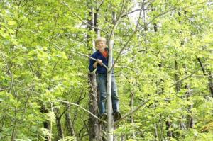 Warum nicht noch schnell auf einen Baum klettern...