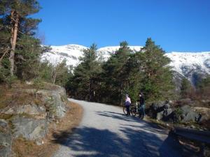 auf und ab dem Fjord entlang...