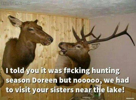 deer-arguing