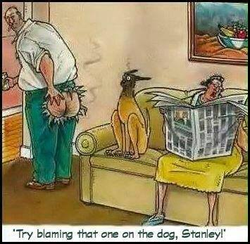 trying-blaming-dog-for-fart