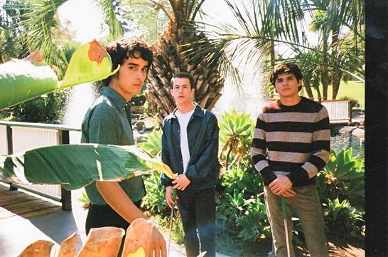 Wallows 2019