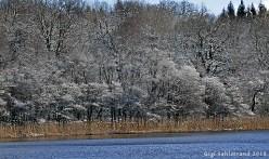 Eldgarnsö i lätt vinterskrud.
