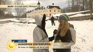 Gigi-Tv4-dec-2015-Fågelmatning-f